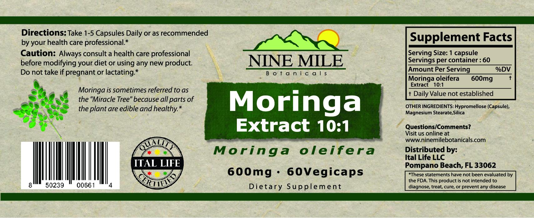 NMB 100cc Moringa jar